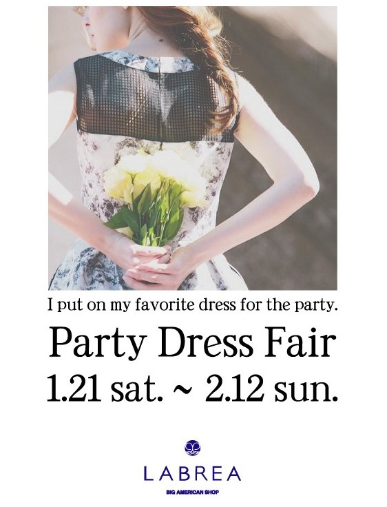 Party Dress Fair